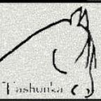Tashunka