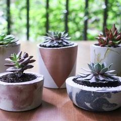 Concrete Planters by Brass Button at Nature's Kindle