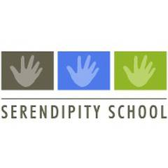 Serendipity School