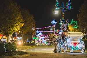 Sidney Christmas Horse & Carriage Tours