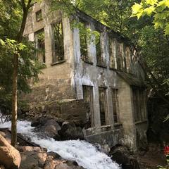 Carbide Willson Trail - Gatineau Park