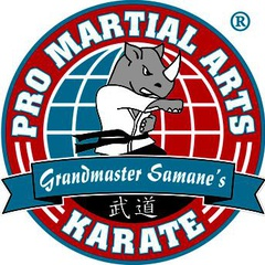 PRO Martial Arts - Lakewood