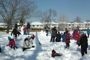 HCPCA Winter Festival