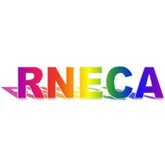 Regina North East Community Association