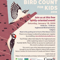 Christmas Bird Count for Kids