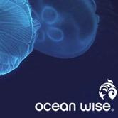 Ocean Wise Chowder Chowdown