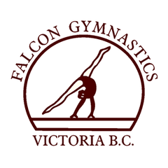 Falcon Gymnastics Centre