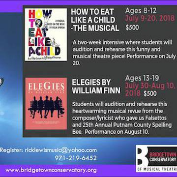 BRIDGETOWN CONSERVATORY OF MUSICAL THEATRE's promotion image