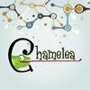 Chamelea Center