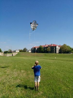 5th Annual Wells Branch Kite Festival