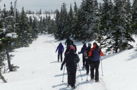 Winter Guided Snowshoe Hike Series