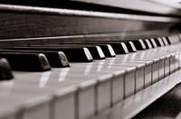 Keys, Hammers and Strings: Exploring the Piano