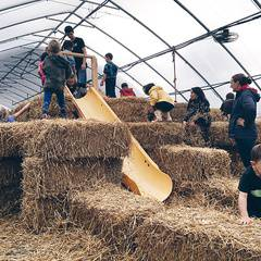 Oxtober Fall Festival