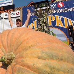 45th Safeway World Championship Pumpkin Weigh-Off, Half Moon Bay