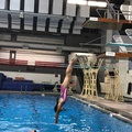Alberta Diving and swimming club's promotion image