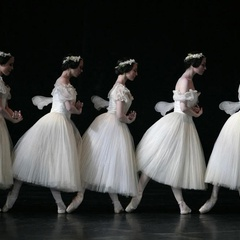 """SF YOUTH BALLET THEATRE PRESENTS """"Raymonda, Act III"""" and Original Contemporary Work This Memorial Weekend"""