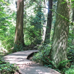 UBC Hiking Trails
