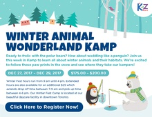 Winter Animal Wonderland Kamp