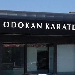Shito-ryu Karate-do