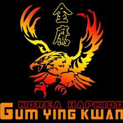 Jin Pal Hapkido Martial Arts Studio
