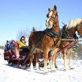 Open Family Sleigh Ride