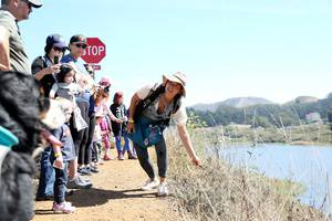 Headlands Nightlife: Family Night Hike & Campfire
