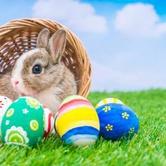 FREE Easter Egg Hunt at Western Oaks Christian Church