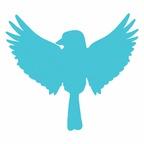 Songbird Rising Suzuki School