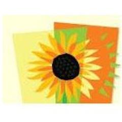 Sunshine Montessori