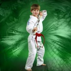TNT Martial Arts - Hillsboro