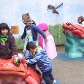 Zoo Kids- Carnivores, Herbivores & Me