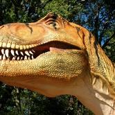 Dinosaurs Live! Life-Size Animatronic Dinosaurs
