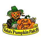 Vala's Pumpkin Patch