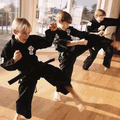 Evolution Martial Arts OKC
