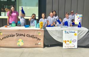 Lemonade Stand Challenge