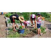 Community Garden Workshop