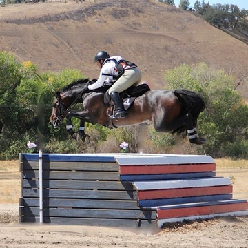 Alborak Riding School's promotion image