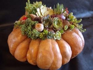 DIY Pumpkin Succulent Decor