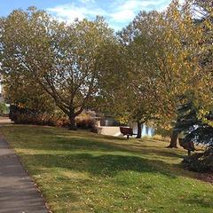 Broadmoor Lake Park