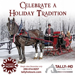Experience the romance and wonder of a traditional horse-drawn sleigh ride!
