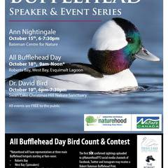 Bufflehead - Speaker & Event Series