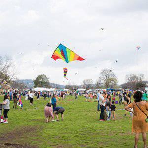 90th ABC Kite Fest