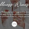 Wellness Winesday