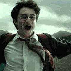 Harry Potter Gift basket