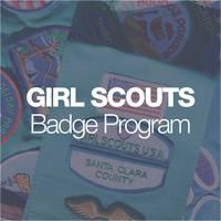 Girl Scout Badge Program   Juniors