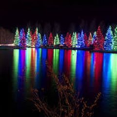 Christmas at Spruce Meadows