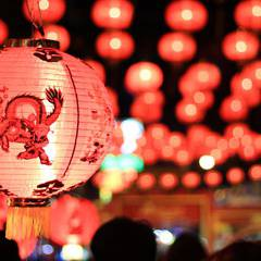 Chinese New Year Festival 2019