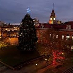 Annual Centennial Square Christmas Tree Light-Up