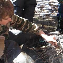 2020 PD Day Camps at Apps' Mill Nature Centre