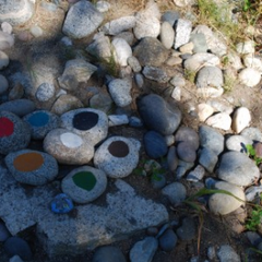 Medicine Wheel Ceremony